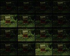 Mr. Rummel's Impromptu Performance, shown are a series of film stills)
