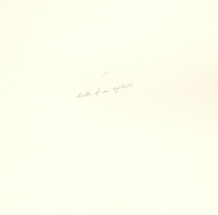 n durvasula 'death of an eyelash' watercolour, pencil on paper 1999.JPG